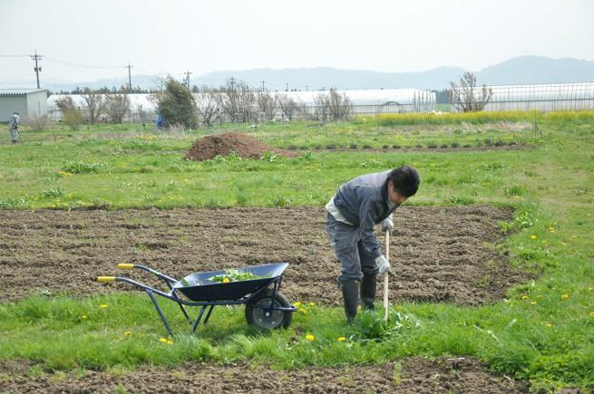 農作業の様子2